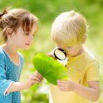 Nieuwsgierigheid en geweldloze commincatie - foto van kinderen met vergrootglas